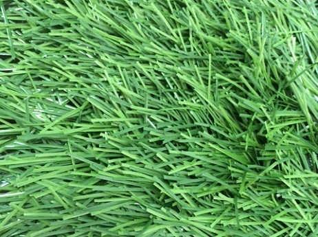 Искусственный газон Т002