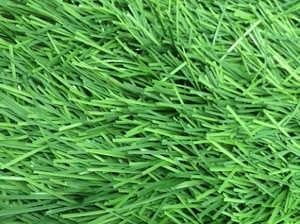 Искусственная трава Т004
