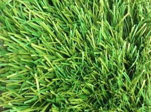 Искусственная трава Т005